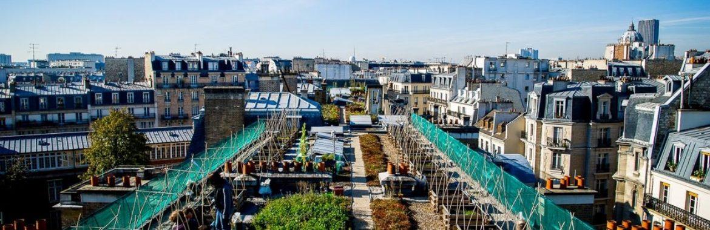 Agriculture urbaine sur les toits de paris appartement for Appartement sur les toits paris
